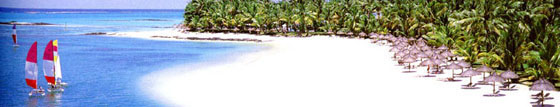 wedding in Mauritius,  honeymoon in Mauritius - is a wedding, honeymoon in Paradise.